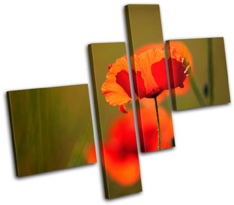 Poppy Field Flowers Floral - 13-1505(00B)-MP02-LO